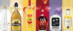 Photo for: Distribution Channels for Beverage Industry – Niche Import